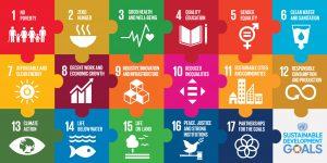 Foredrag om bæredygtighed som forretnings strategi
